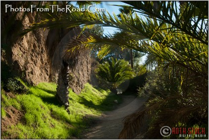 Hollywood Hills Hiking Trail