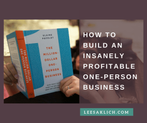 insanely profitable one person business