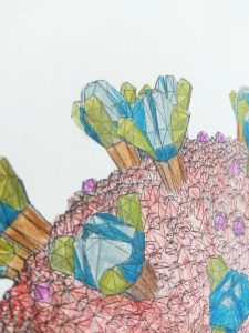 Coronavirus 3D colouring sheet close up