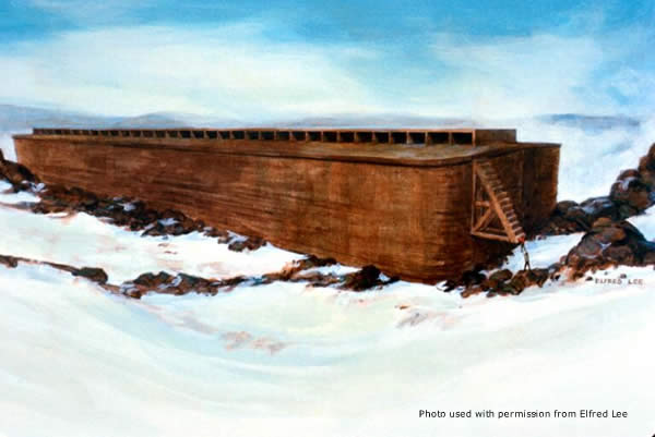 The Ark by Elfred Lee