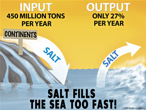 Salt Fills The Sea Too Fast from AIG