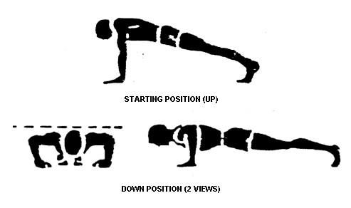 pushup-diagram