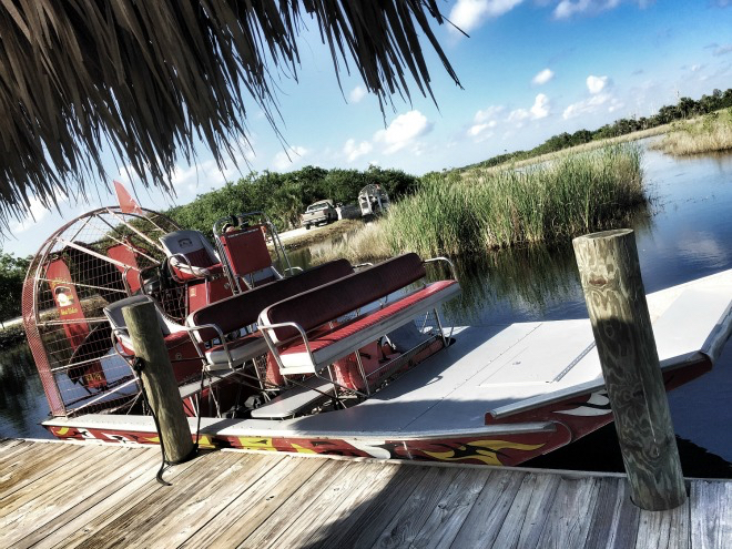 Florida Everglades Airboat Aigator Tour