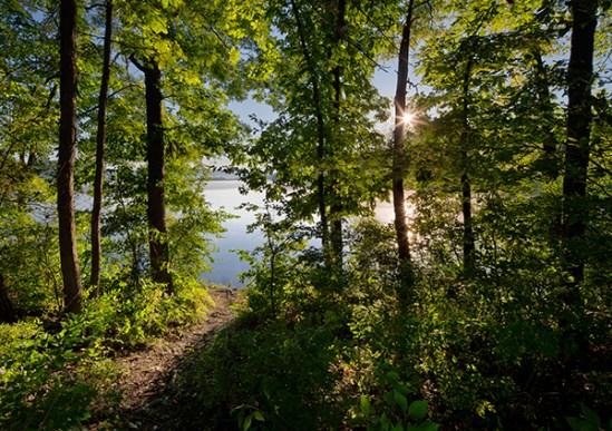 Middle Creek Wildlife Preserve