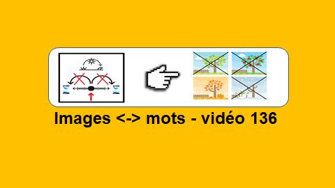 le français illustré - jeu vidéo 136