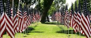 Flag Row - United States - photo by Paul Mayne