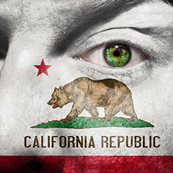 California Privacy Laws Change: Identity Theft Prevention and Mitigation Services