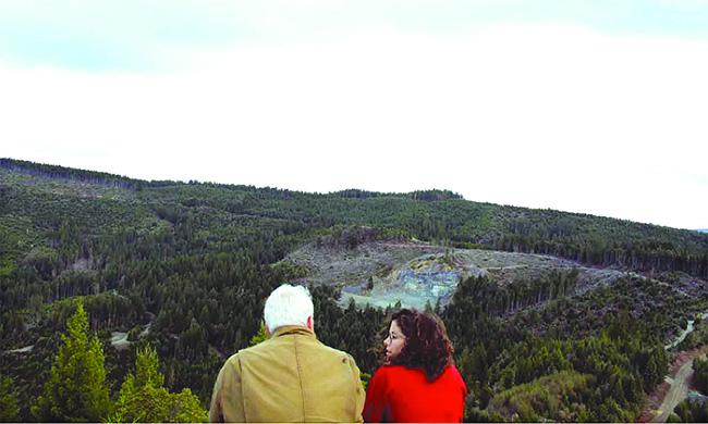 redwoods-mtn-view-650