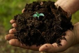 Soil Solution