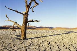 Meek shall inherit the Earth
