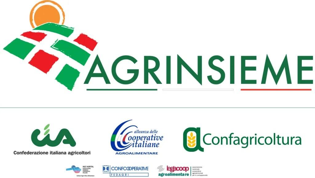 logo_agrinsieme