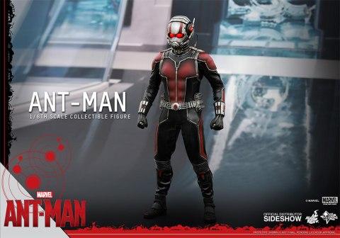 902448-ant-man-08