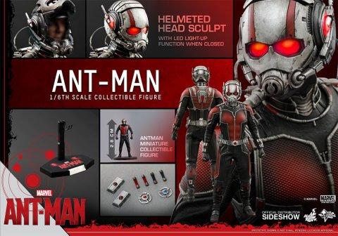 902448-ant-man-17