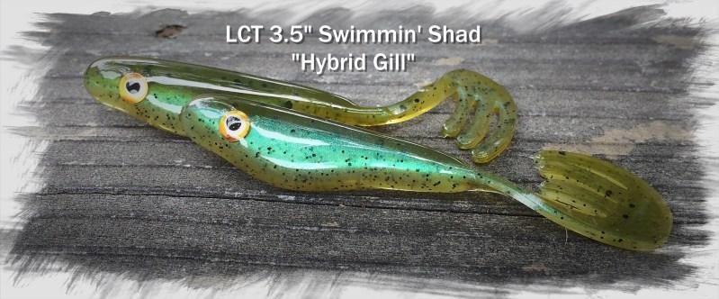LCT 3.5 Swimmin Shad Hybrid Gill 2768x1150