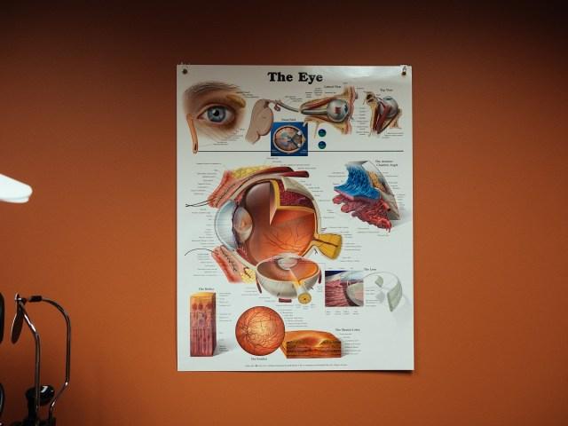 Legacy Eyecare Vision