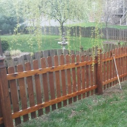 fence staining 1