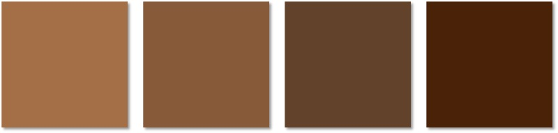 interior painting - brown