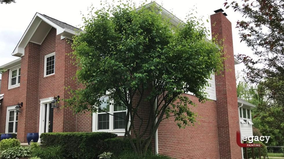Residential Painter Greenwood
