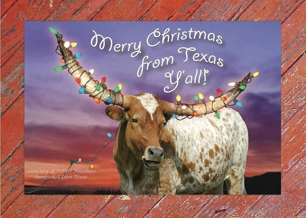 Merry Christmas From Texas Happy Hanukkah To You