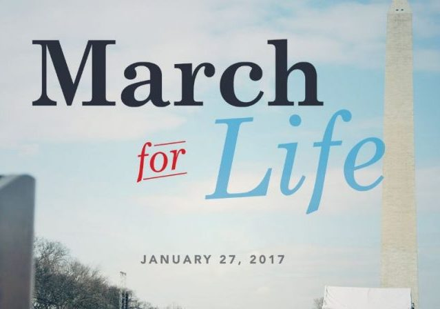 Image result for cartoons on march for life pro life