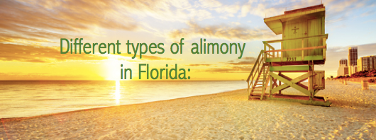 Types Alimony Florida