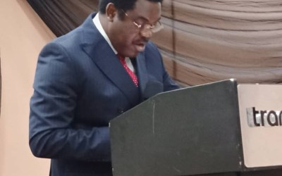 Dele Adesina Condemns Police Assault On Female Lawyer