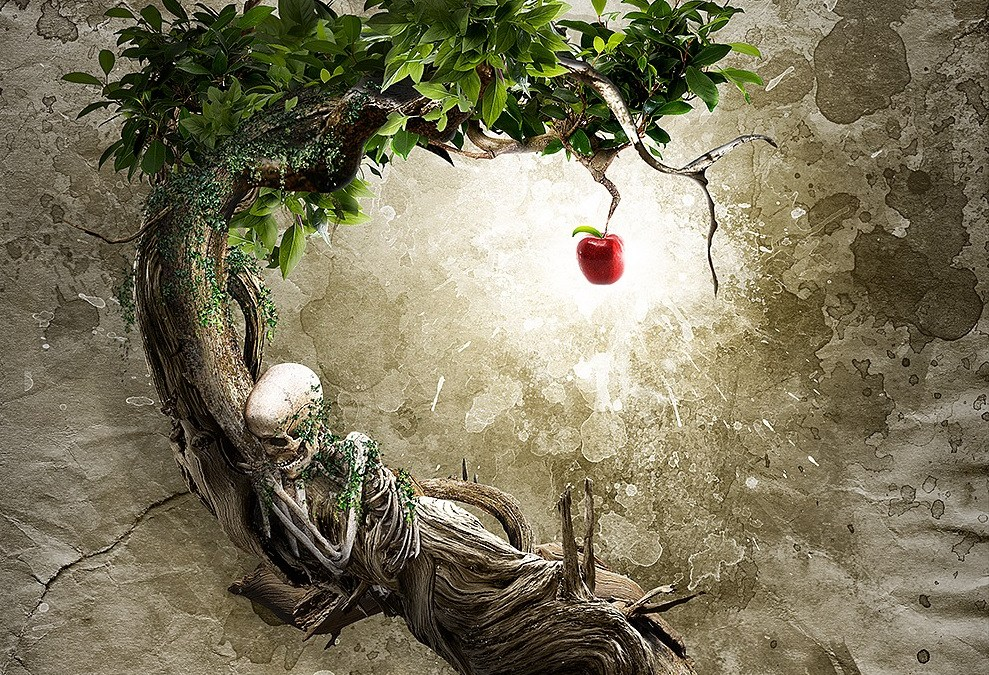The Tree Symbolizes the Illicit BELIEF in Duality