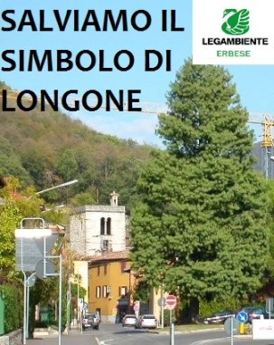 Torre e Pino G