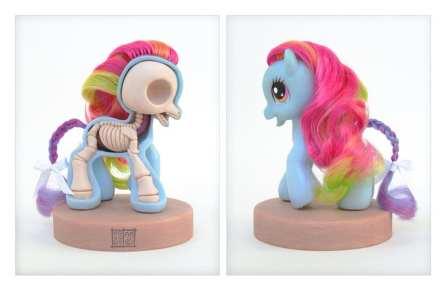 my_little_pony_anatomy_sculpt_by_freeny-d2zb8kh
