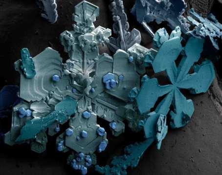 fiocco di neve al microscopio elettronico 2