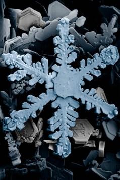 cristallo di neve al microscopio elettronico