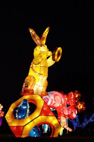 Taiwan Lantern Festival 10