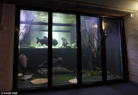 Guinnes Aquarium LN (1)