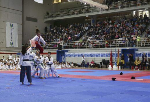 taekwondo poomsae