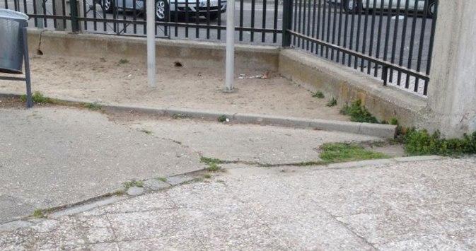 Puerta-de-acceso CEIP Gonzalo de Berceo