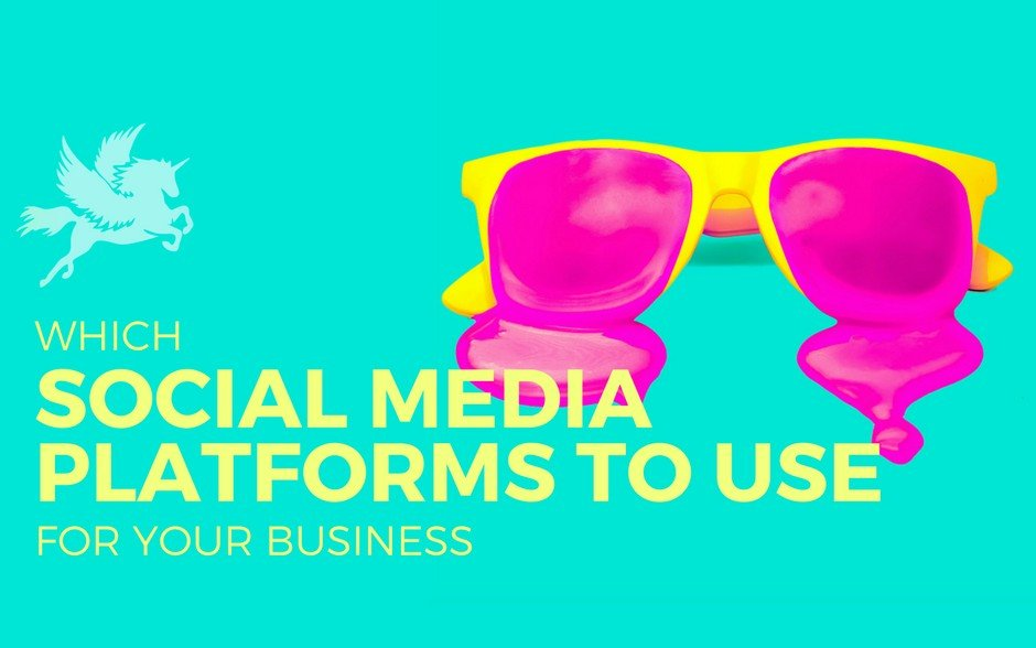 How to know which social media platforms you need for your business