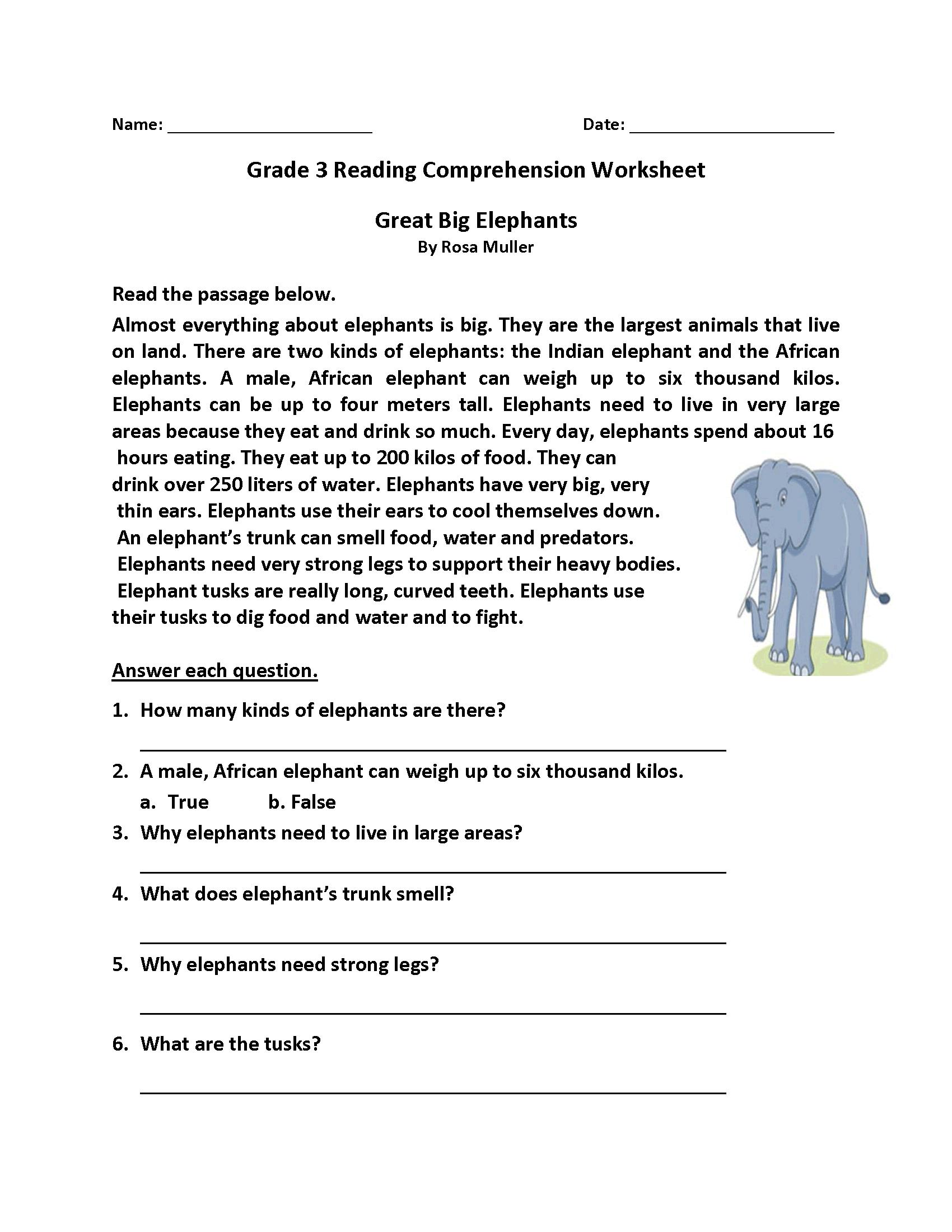 Year 3 Literacy Worksheets Printable