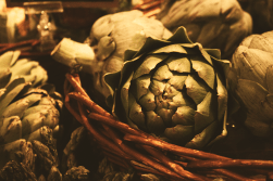 Kitchen Still Life: Artichoke