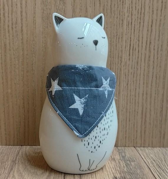 chat-avec-bandana-etoiles