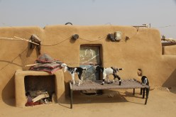 Thar Desert courtyard