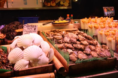 Concha shells and oysters