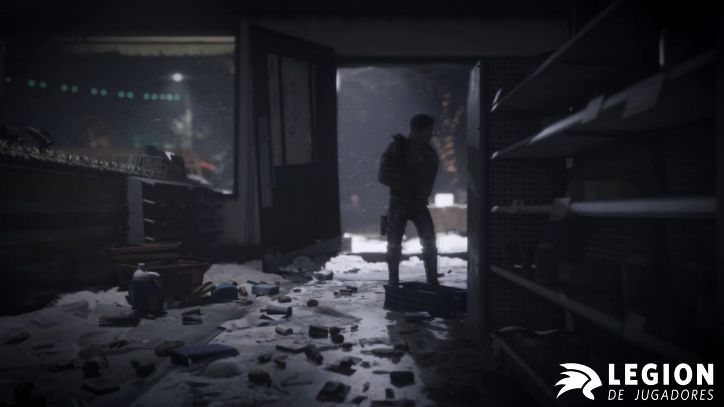 thedivision (2)