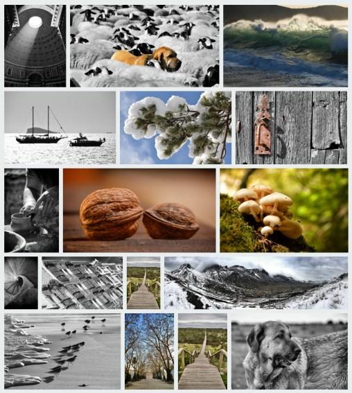 istock-portfolio