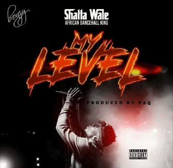 Shatta Wale - My Level