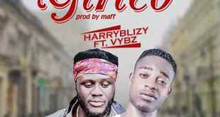 Harry Blizy Ft. VYBZ - Girleo