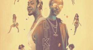 Kojo Funds ft. WizKid – I Like