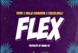 Ceeza Milli x Terri x Bella Shmurda - Flex