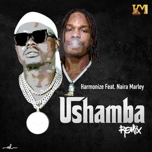 Harmonize – Ushamba (Remix) ft. Naira Marley