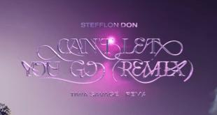 Stefflon Don - Can't Let You Go (Remix) ft. Tiwa Savage x Rema