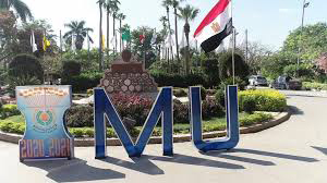 Mansoura University one of the Best Universities to Study in Africa